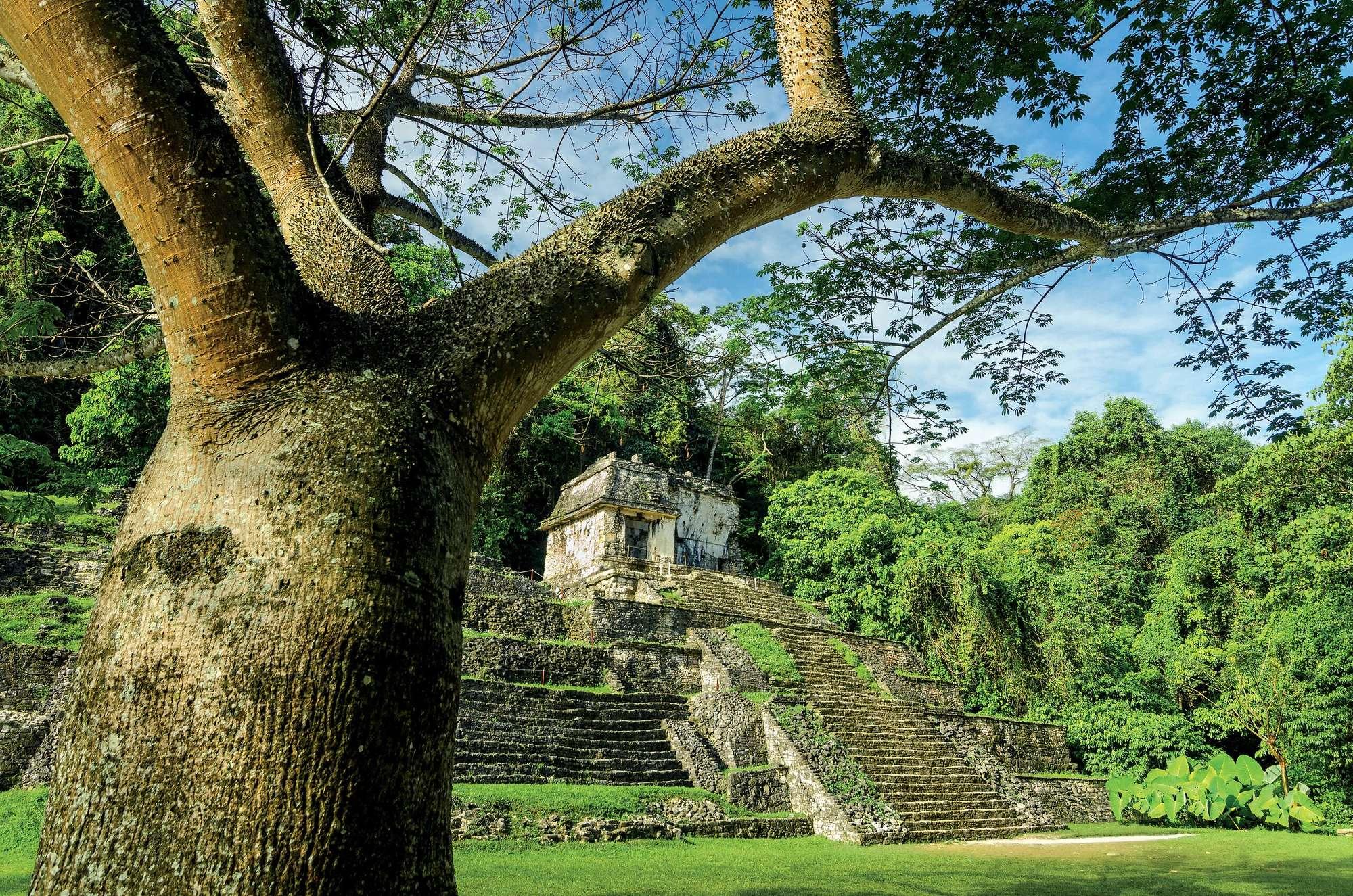 Grand tour du Yucatán