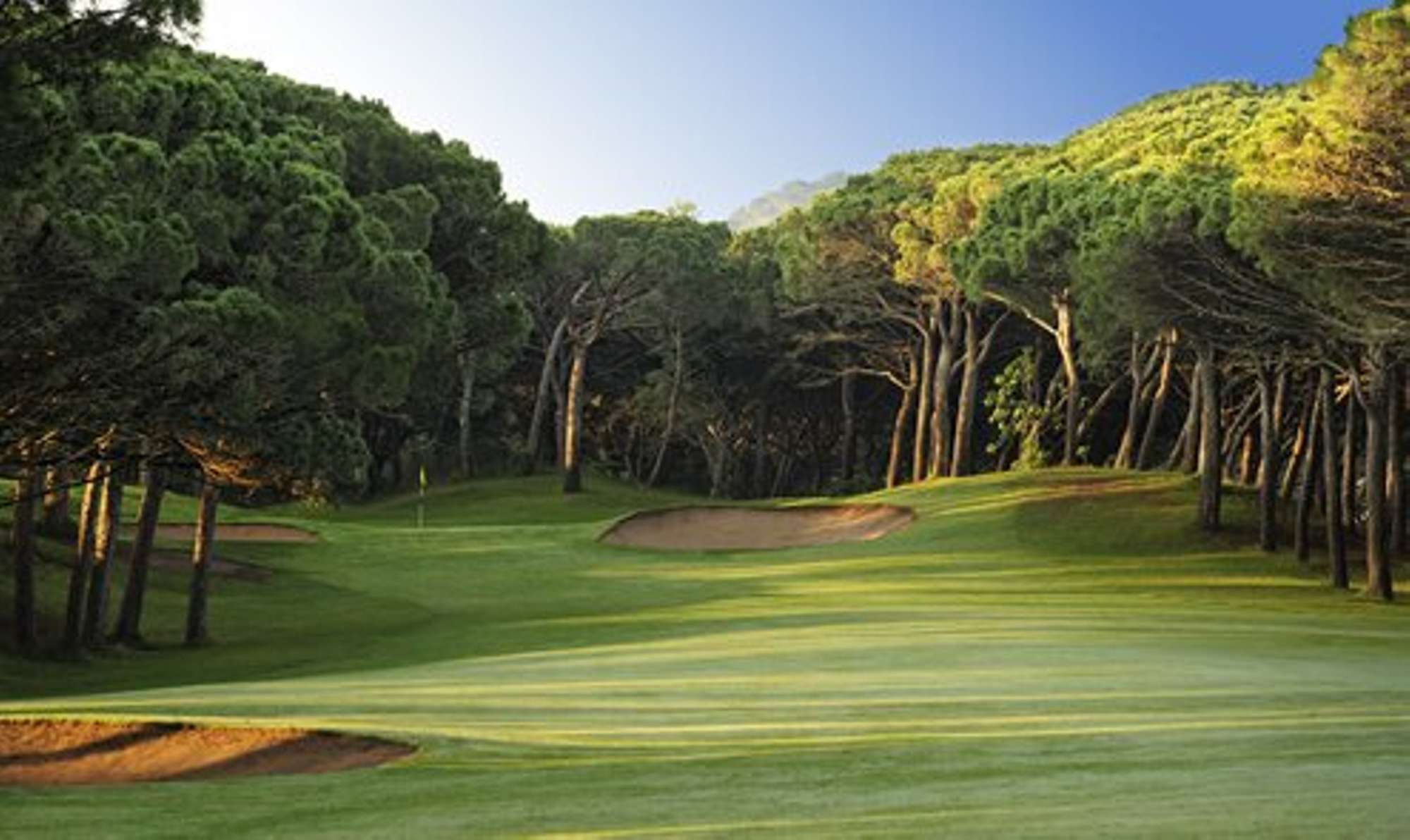 Discover our Golf cruises