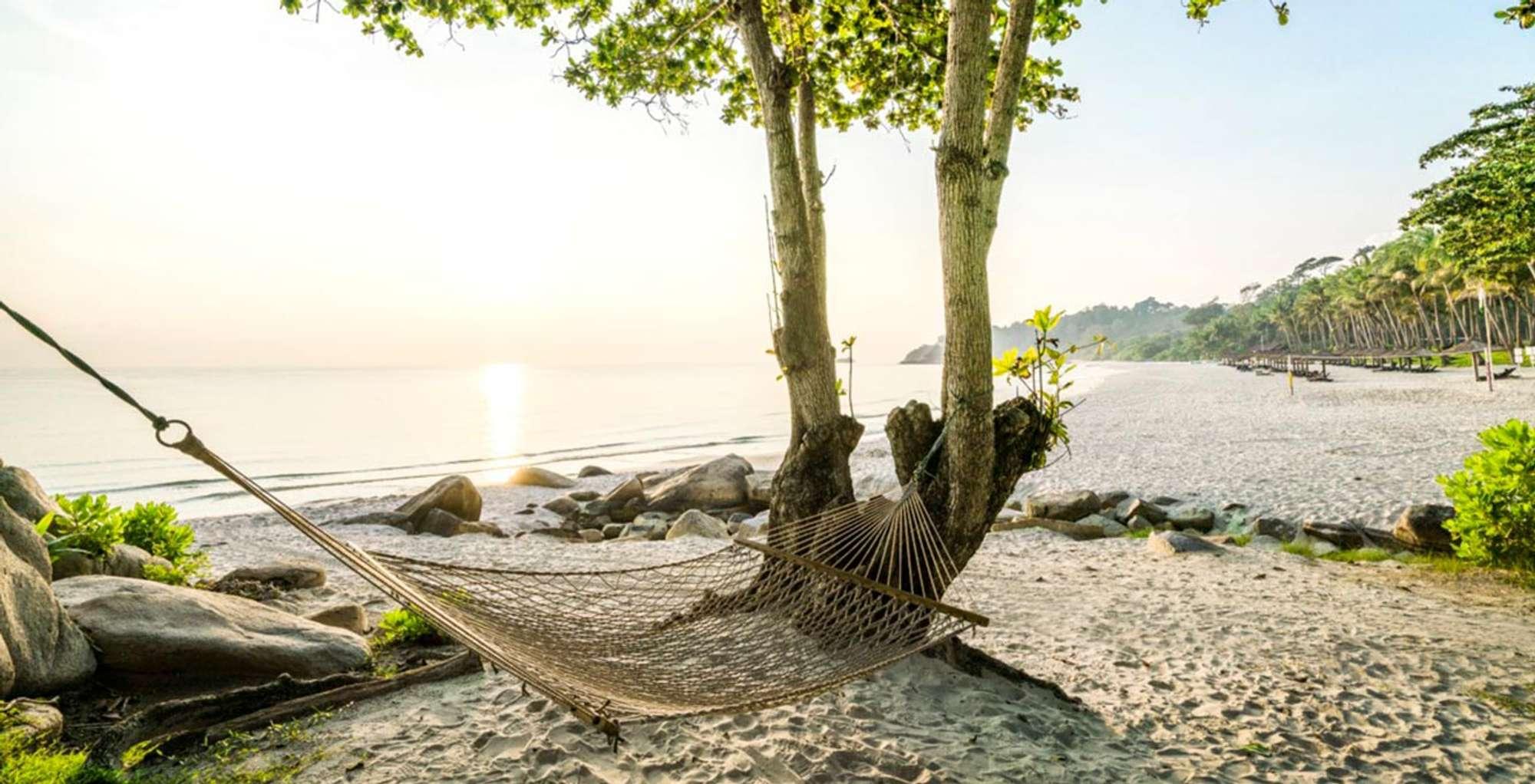 Enjoy a tropical paradise